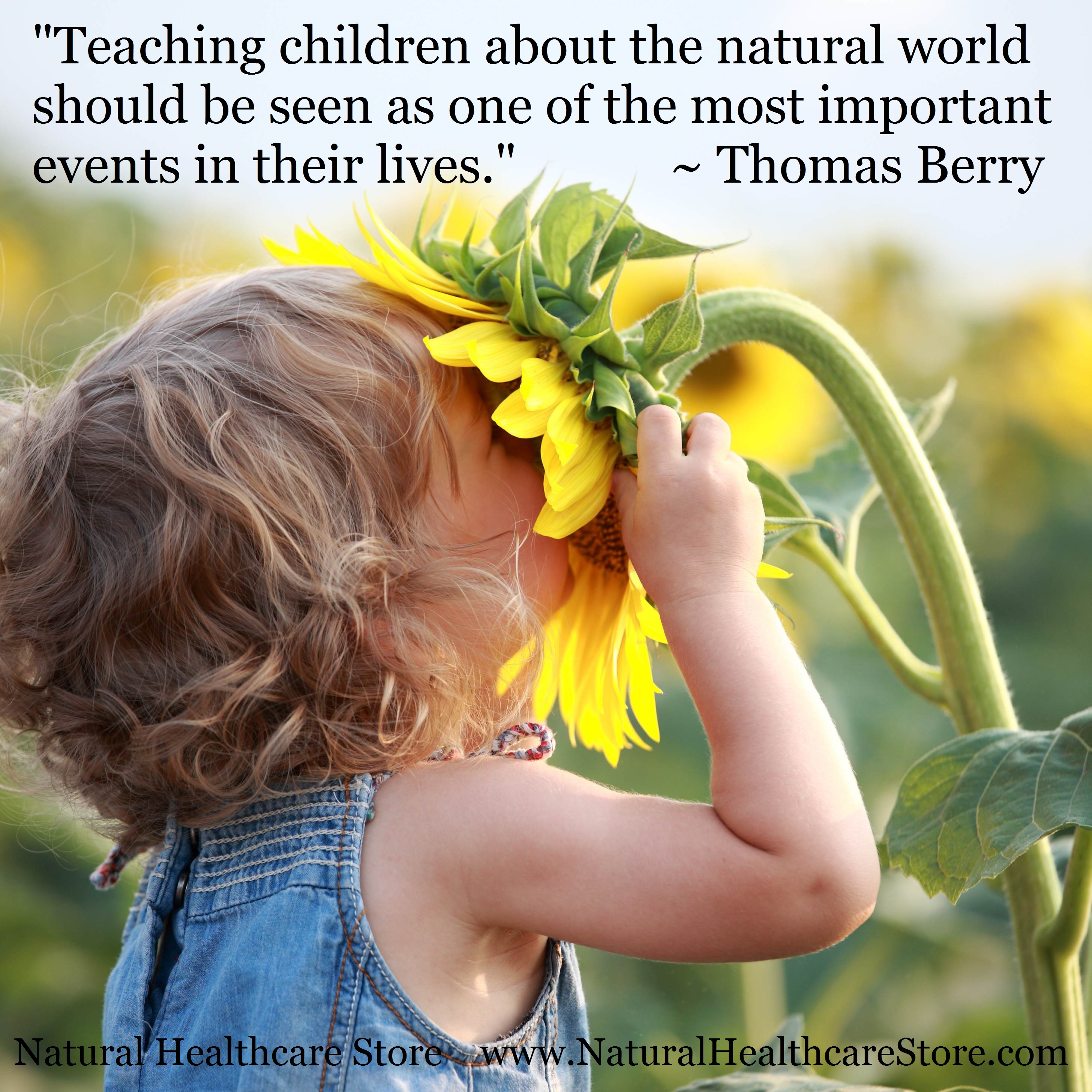 nature the best teacher re connecting the world u0027s children with