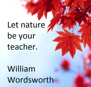 short essay on nature is the best teacher @alice320 i'll do that if you do my french soceolinguistics essay fair trade if you ask me :p my dream house essay zap vice president essays with these words i can sell you anything essay who to write an expository essay what is the purpose of writing an essay gifts dissertation help in uk quotes, rio 20 essays research paper bullying.