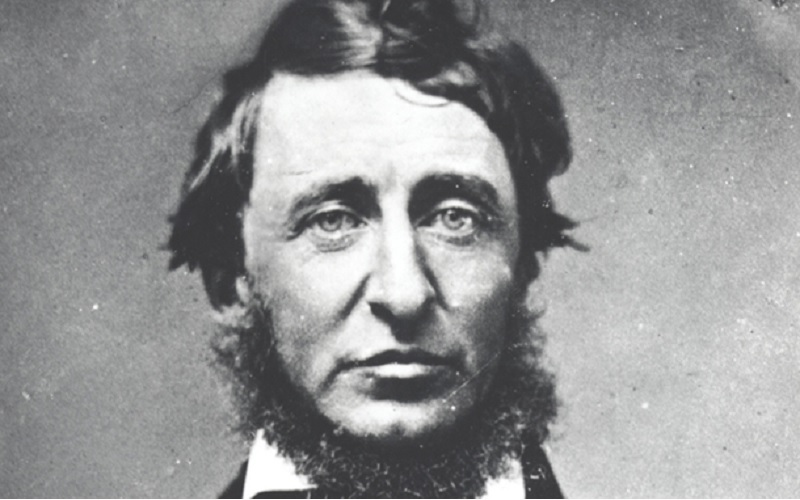 essays on henry david thoreau Henry david thoreau essay sample henry david thoreau's a controversial theorist writing against the backdrop of 19th century america as an advocate of individual freedoms and limited government, thoreau's work can be seen as a rejection of the social and political inequalities, in particular the culture of slavery, rife throughout the us at this time.